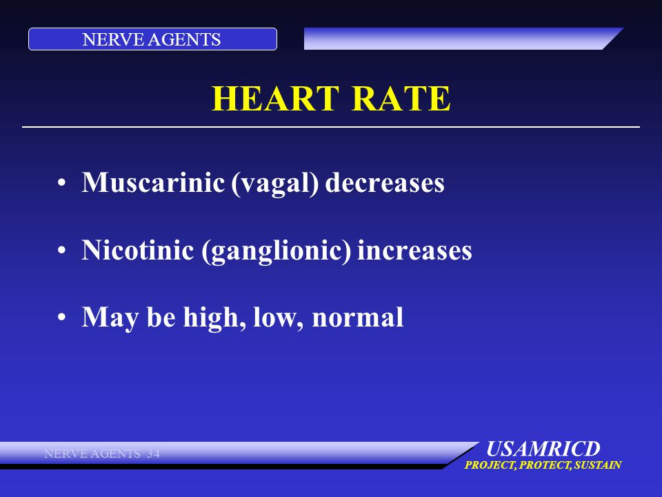 HEART RATE Muscarinic (vagal) decreases