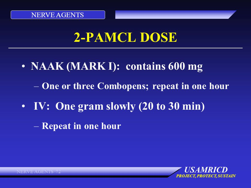 2-PAMCL DOSE NAAK (MARK I): contains 600 mg