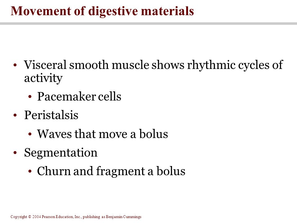 Movement of digestive materials