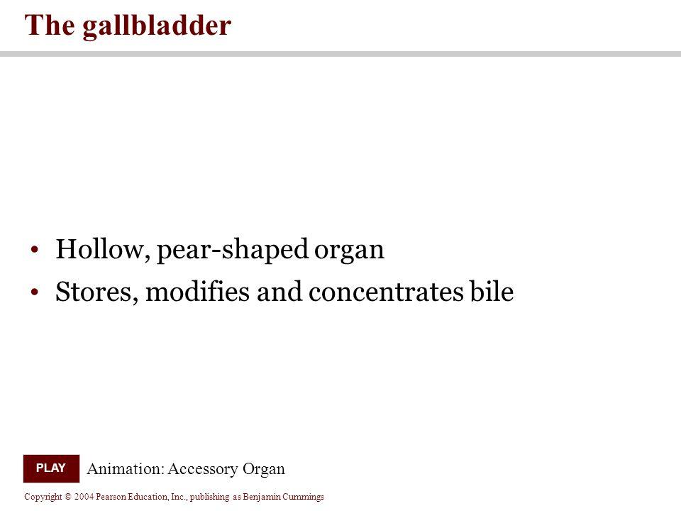 The gallbladder Hollow, pear-shaped organ