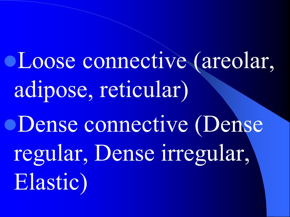 Loose connective (areolar, adipose, reticular)