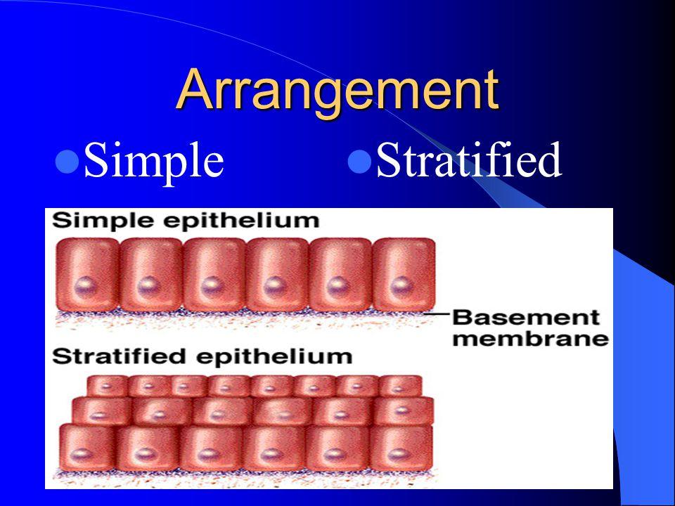 Arrangement Simple Stratified