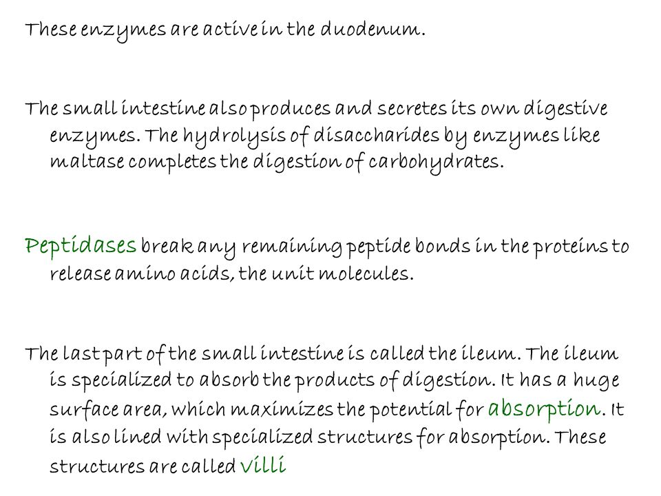 These enzymes are active in the duodenum.