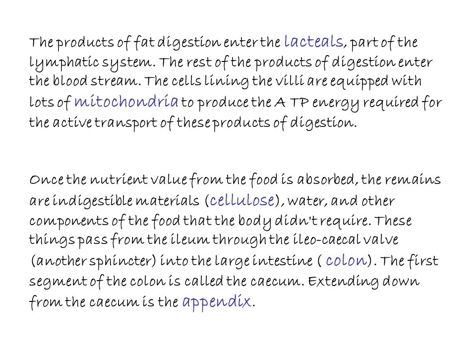 The products of fat digestion enter the lacteals, part of the lymphatic system. The rest of the products of digestion enter the blood stream. The cells lining the villi are equipped with lots of mitochondria to produce the A TP energy required for the active transport of these products of digestion.