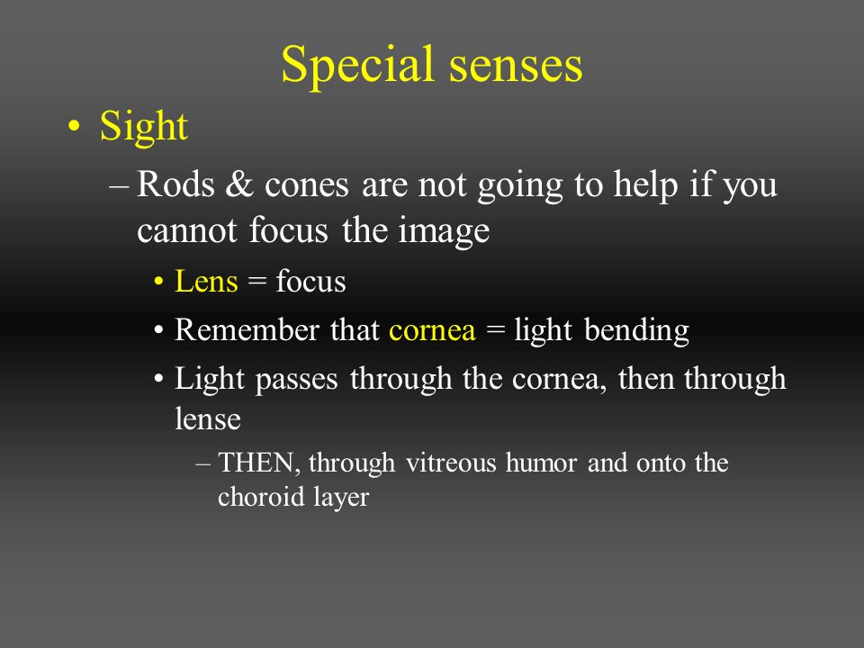 Special senses Sight. Rods & cones are not going to help if you cannot focus the image. Lens = focus.