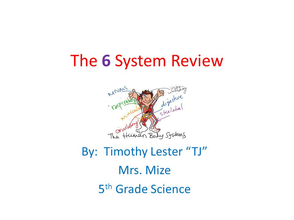 By: Timothy Lester TJ Mrs. Mize 5th Grade Science