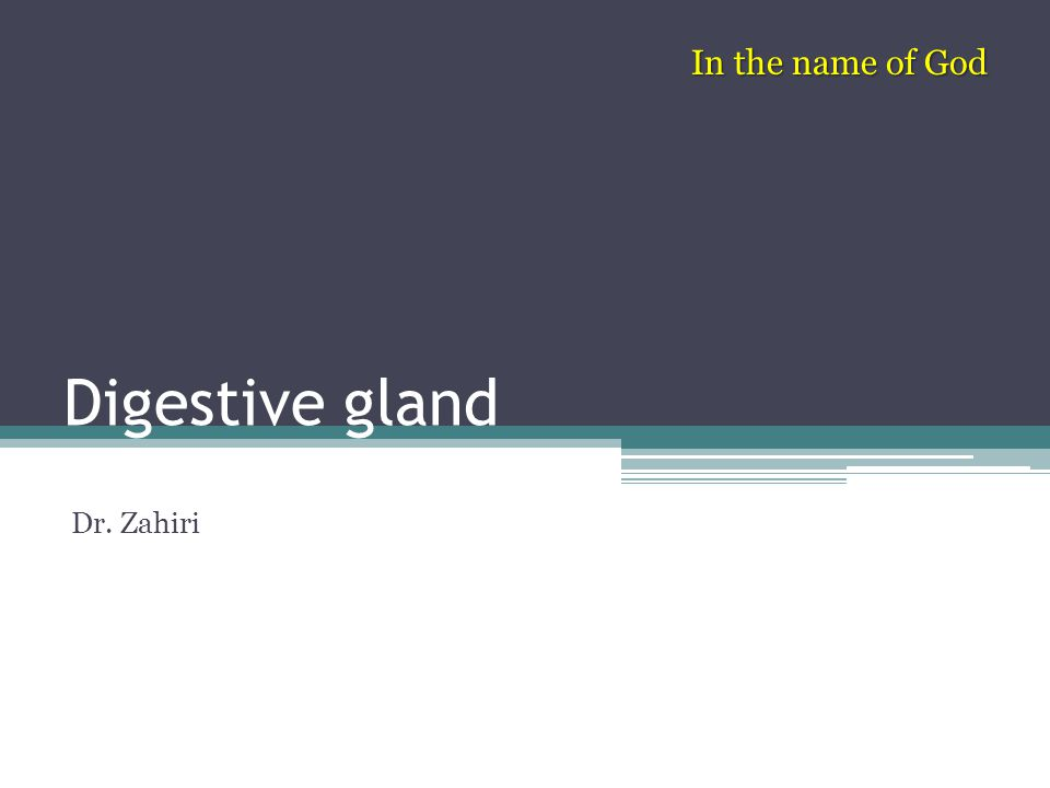 In the name of God Digestive gland Dr. Zahiri