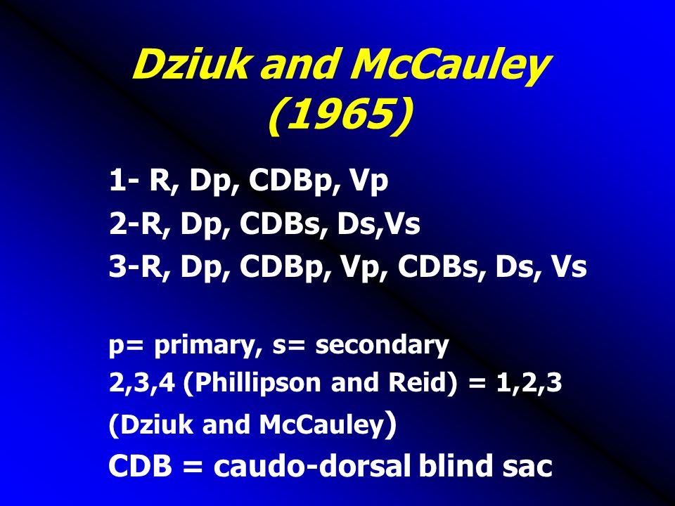 Dziuk and McCauley (1965) 1- R, Dp, CDBp, Vp 2-R, Dp, CDBs, Ds,Vs