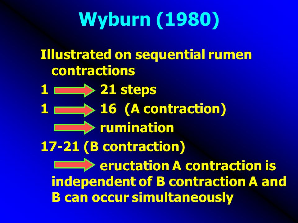 Wyburn (1980) Illustrated on sequential rumen contractions 1 21 steps