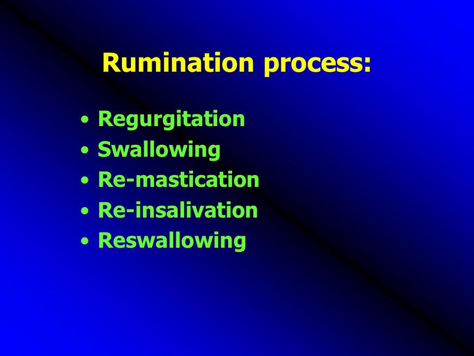Rumination process: Regurgitation Swallowing Re-mastication