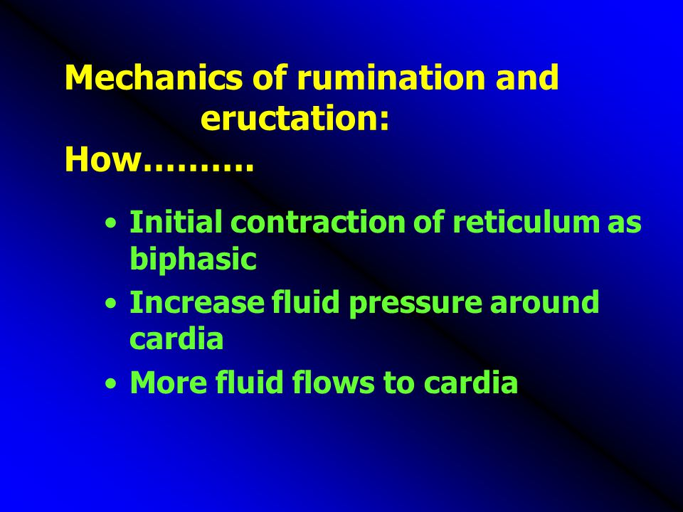 Mechanics of rumination and eructation: How……….