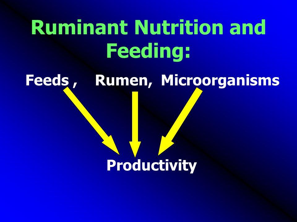 Ruminant Nutrition and Feeding: