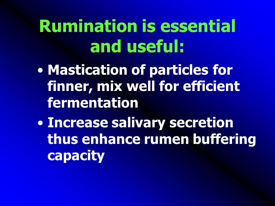 Rumination is essential and useful: