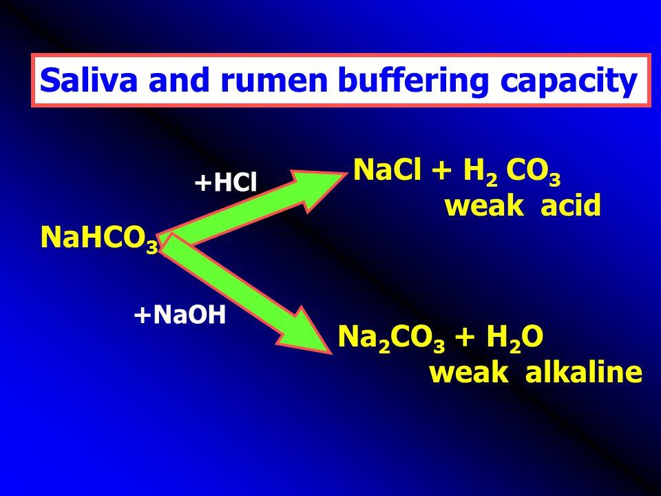 Saliva and rumen buffering capacity
