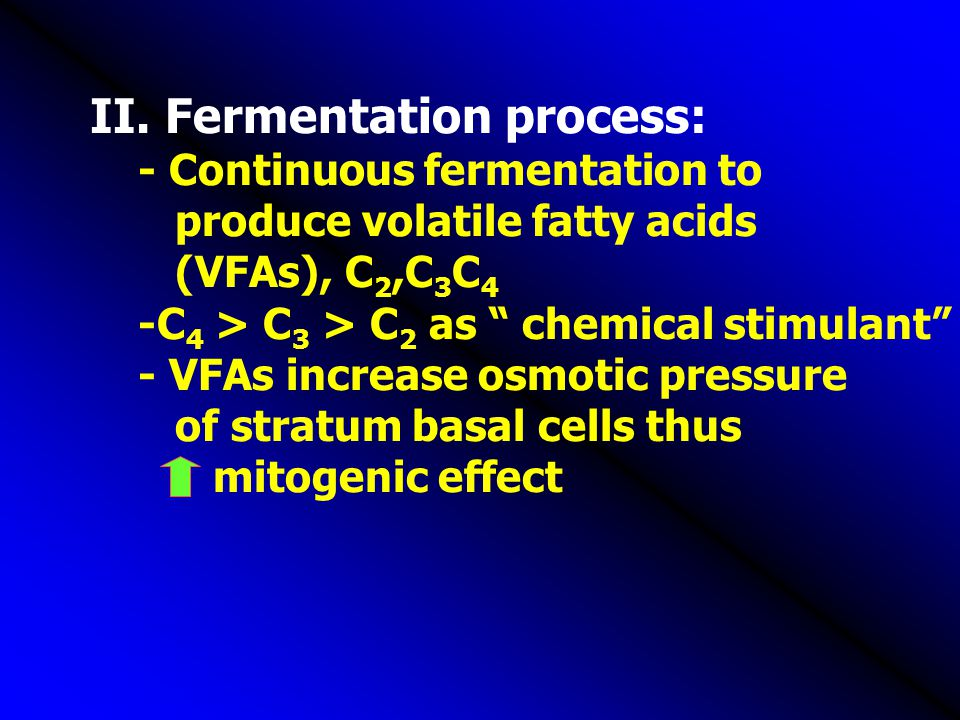 II. Fermentation process: