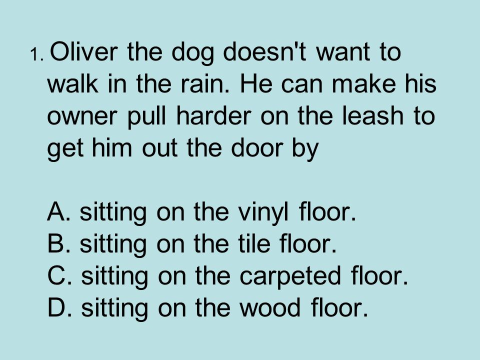 1. Oliver the dog doesn t want to walk in the rain