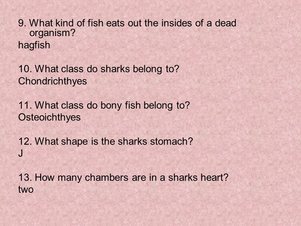 9. What kind of fish eats out the insides of a dead organism