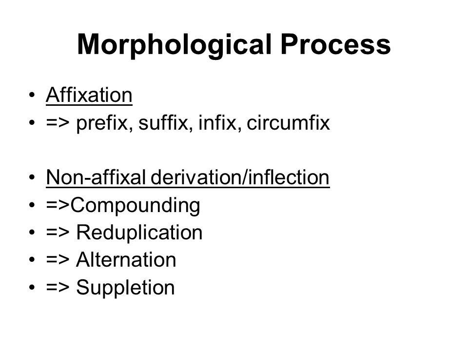 Morphological Process