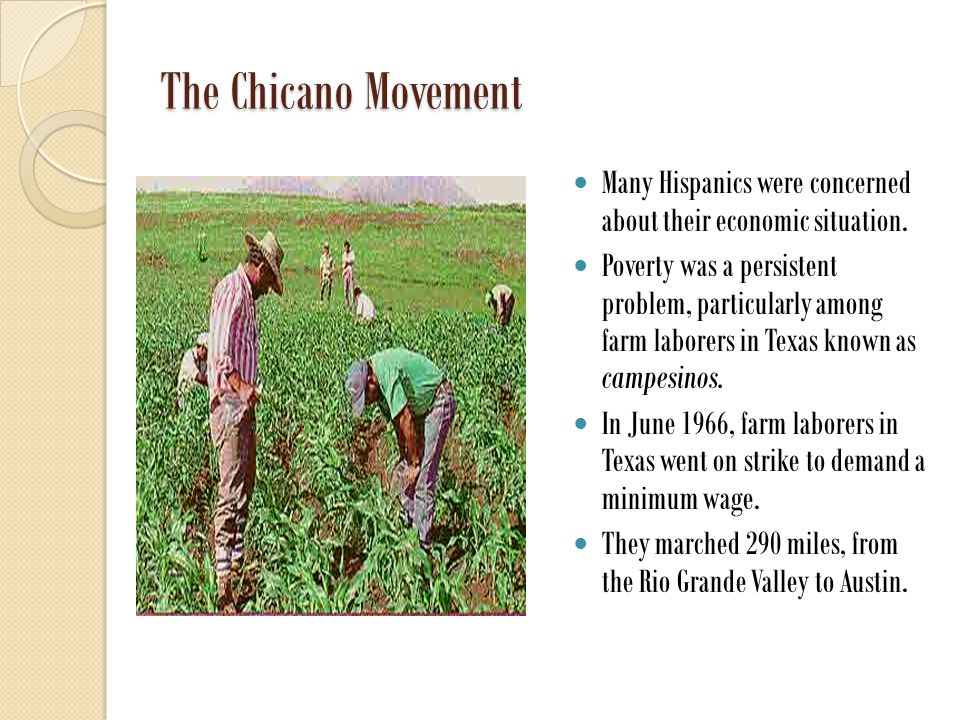 The Chicano Movement Many Hispanics were concerned about their economic situation.