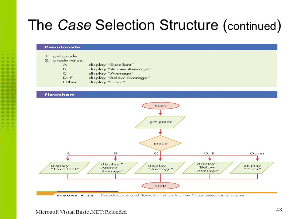 The Case Selection Structure (continued)