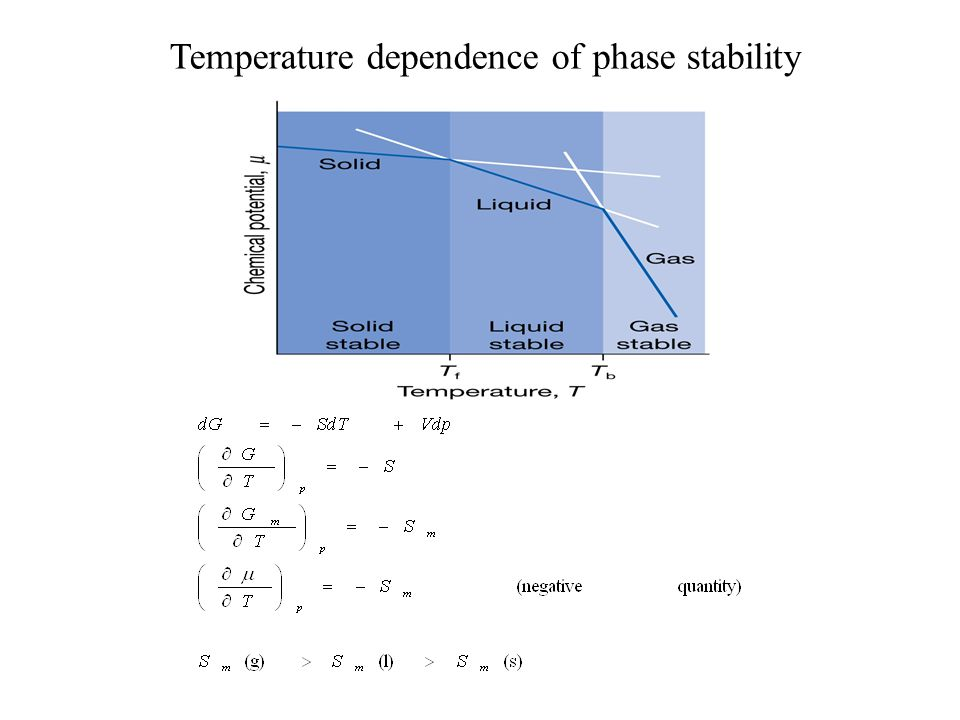 Temperature dependence of phase stability