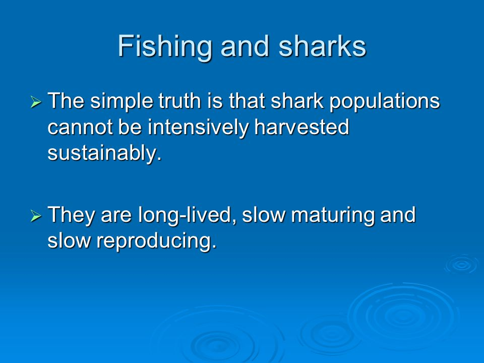 Fishing and sharks The simple truth is that shark populations cannot be intensively harvested sustainably.