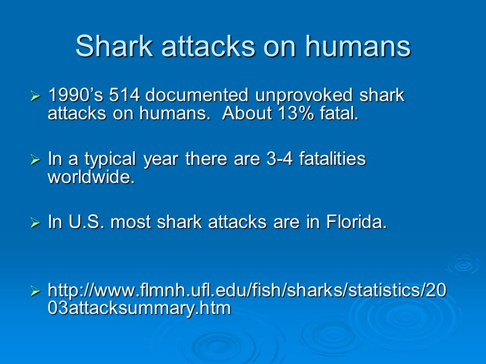 Shark attacks on humans