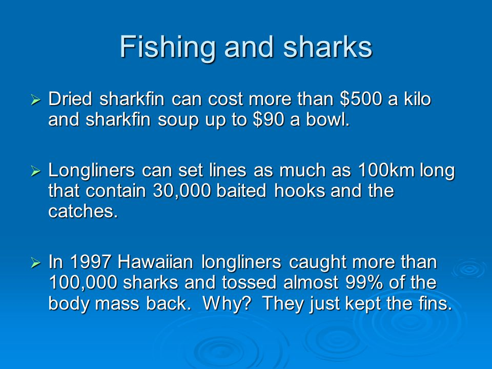 Fishing and sharks Dried sharkfin can cost more than $500 a kilo and sharkfin soup up to $90 a bowl.