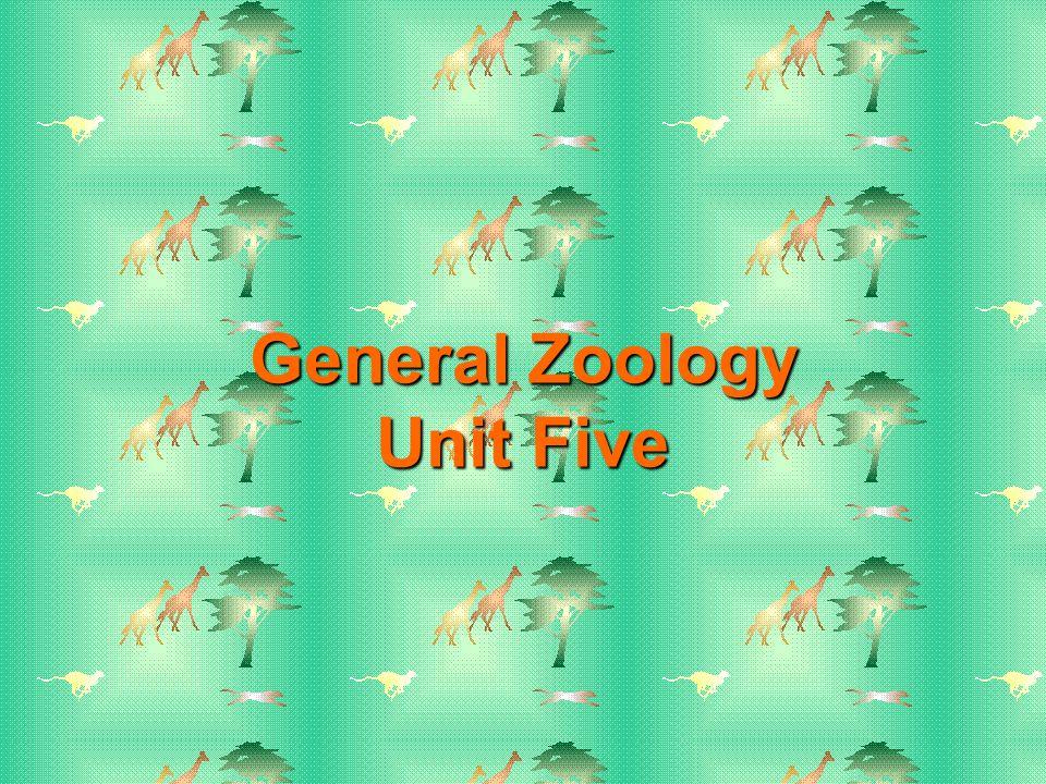 General Zoology Unit Five