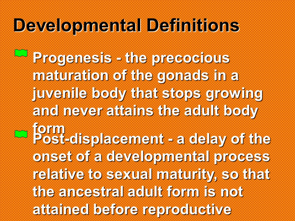 Developmental Definitions
