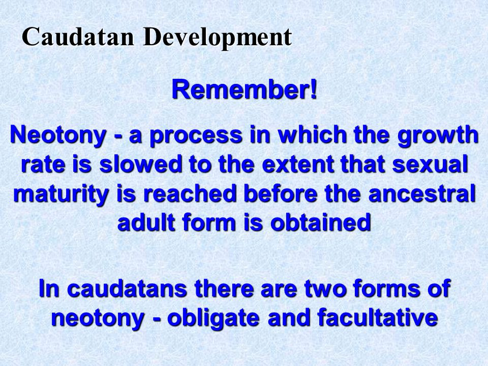 In caudatans there are two forms of neotony - obligate and facultative