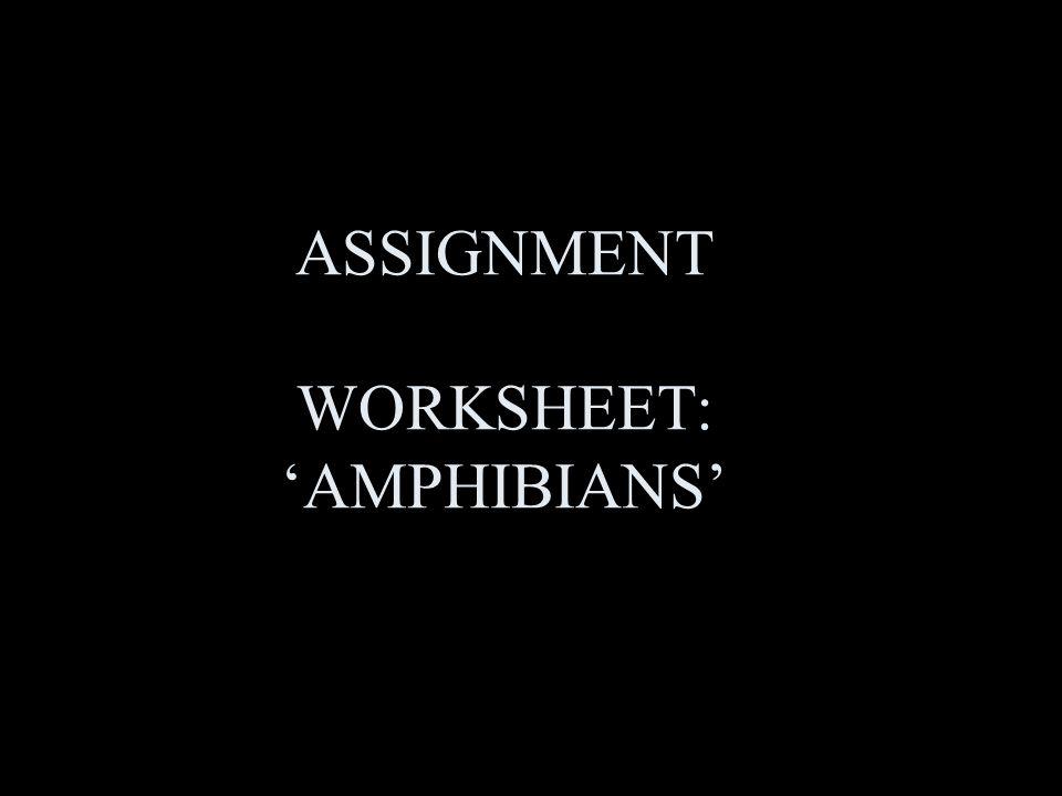 ASSIGNMENT WORKSHEET: 'AMPHIBIANS'