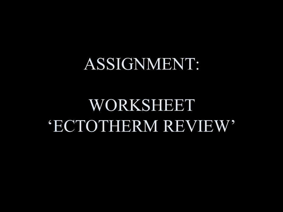 ASSIGNMENT: WORKSHEET 'ECTOTHERM REVIEW'