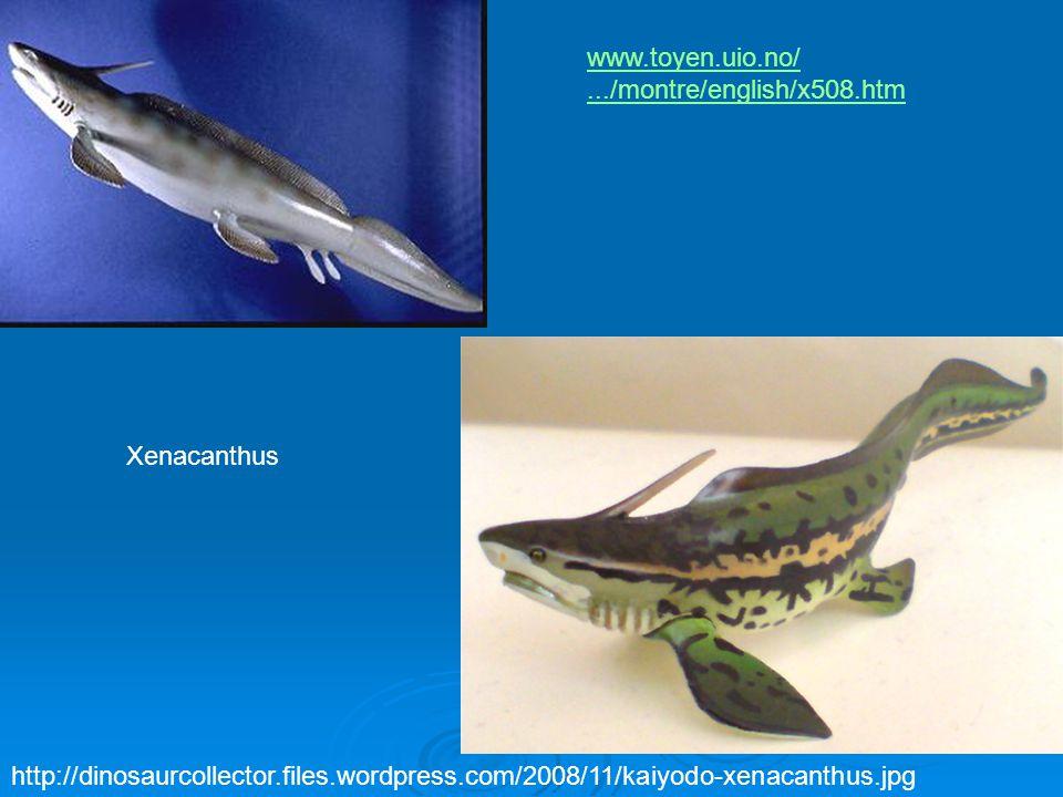 www.toyen.uio.no/ .../montre/english/x508.htm. Xenacanthus.