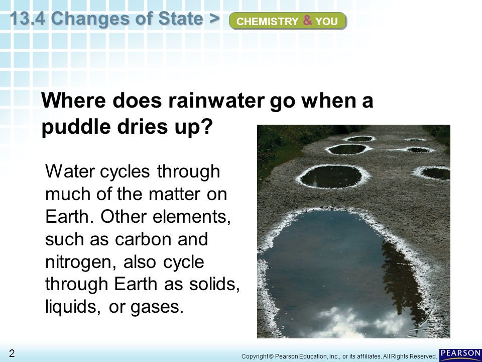 Where does rainwater go when a puddle dries up