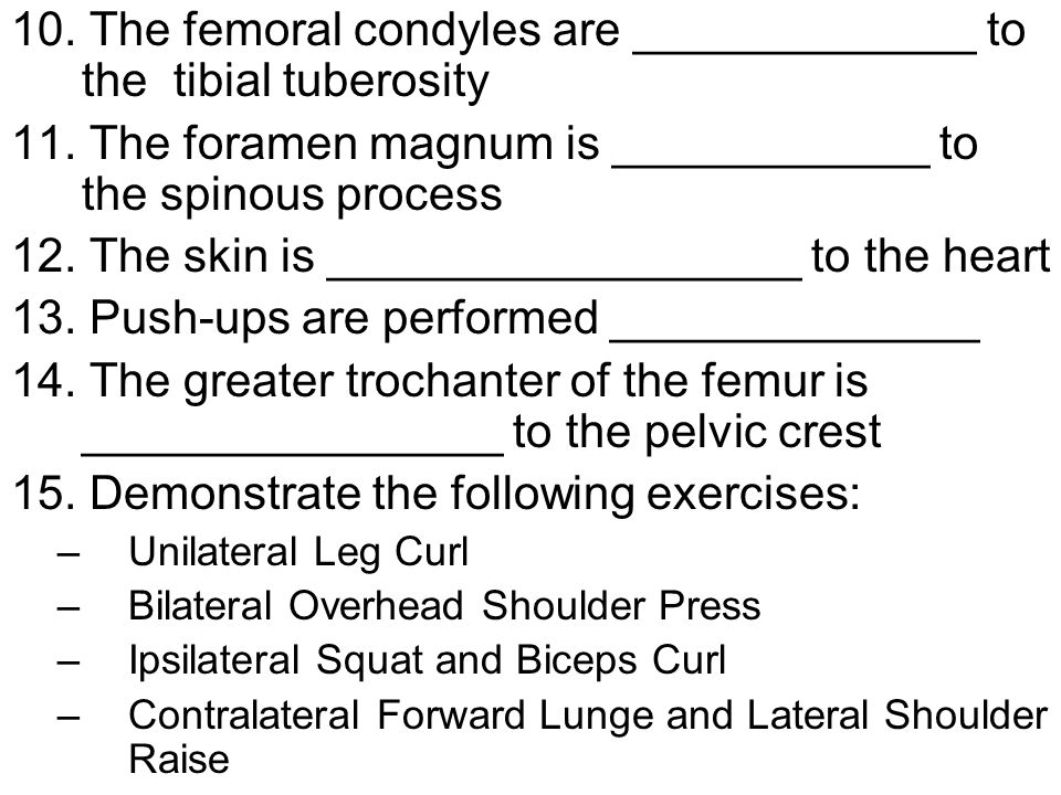 10. The femoral condyles are _____________ to the tibial tuberosity
