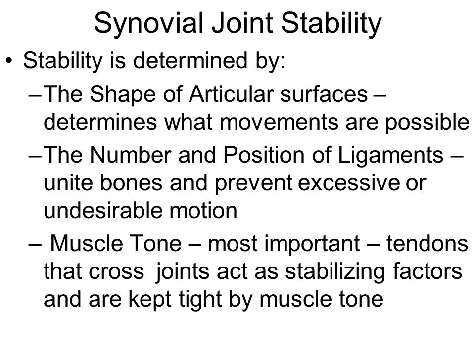 Synovial Joint Stability