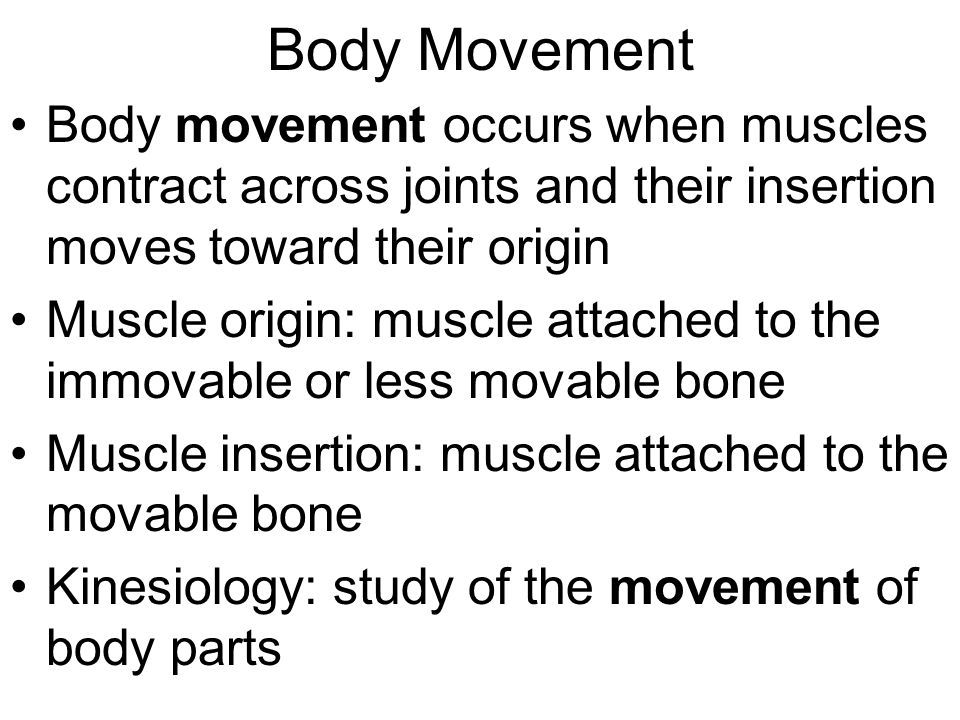 Body Movement Body movement occurs when muscles contract across joints and their insertion moves toward their origin.