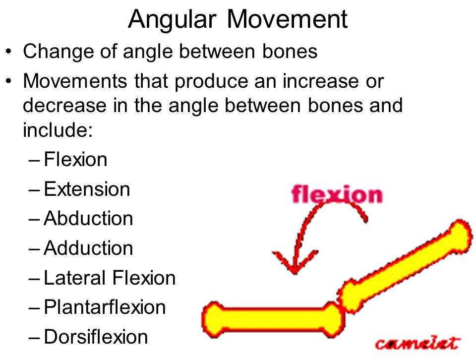 Angular Movement Change of angle between bones