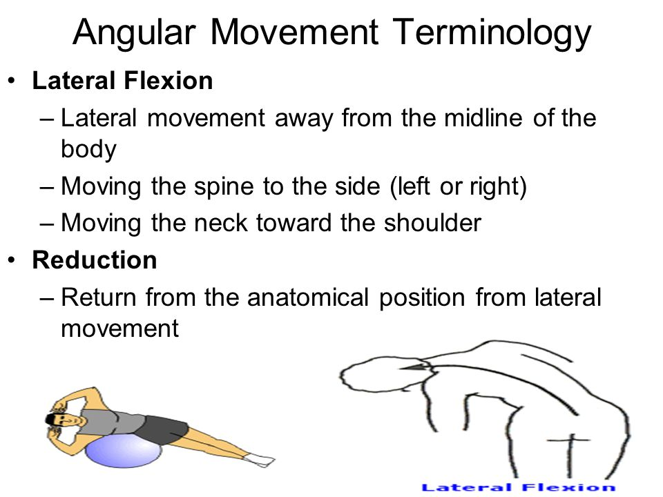 Angular Movement Terminology