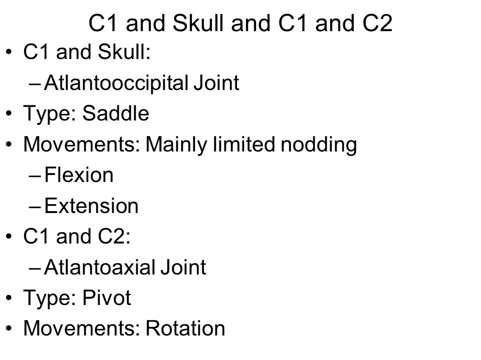 C1 and Skull and C1 and C2 C1 and Skull: Atlantooccipital Joint