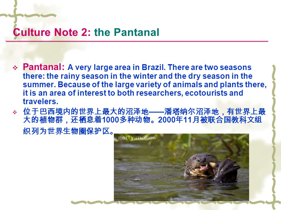 Culture Note 2: the Pantanal