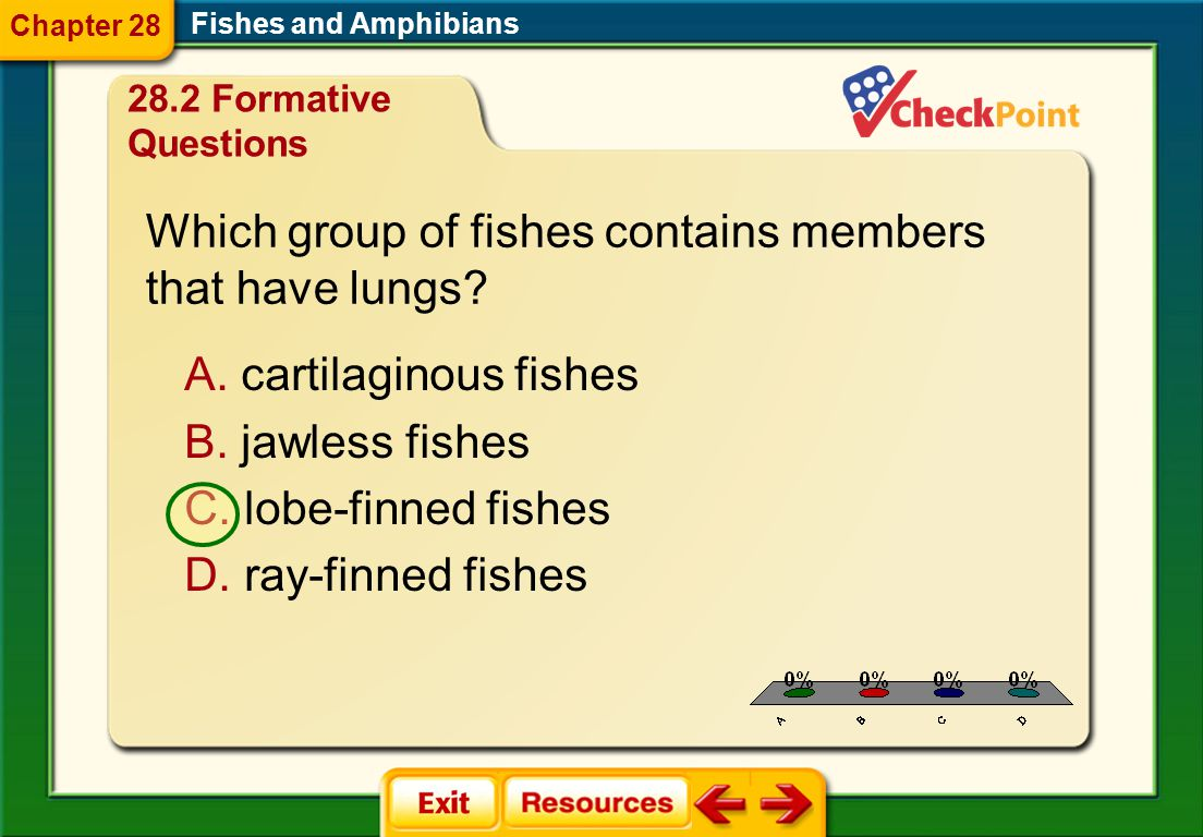 Which group of fishes contains members that have lungs