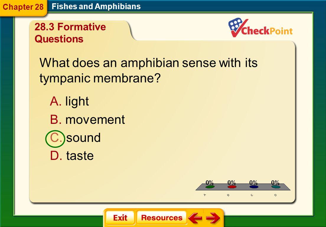 What does an amphibian sense with its tympanic membrane