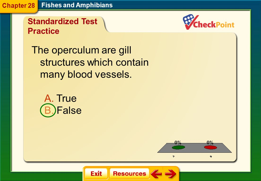 Chapter 28 Fishes and Amphibians. Standardized Test Practice. The operculum are gill structures which contain many blood vessels.