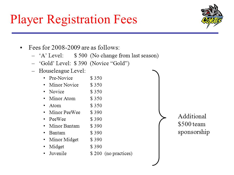Player Registration Fees