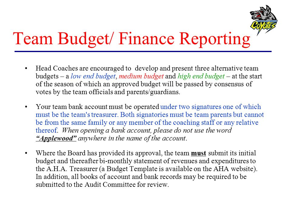 Team Budget/ Finance Reporting