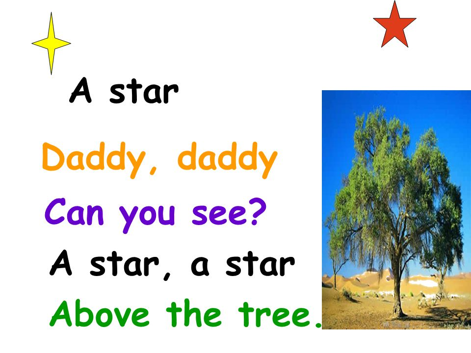A star Daddy, daddy Can you see A star, a star Above the tree.