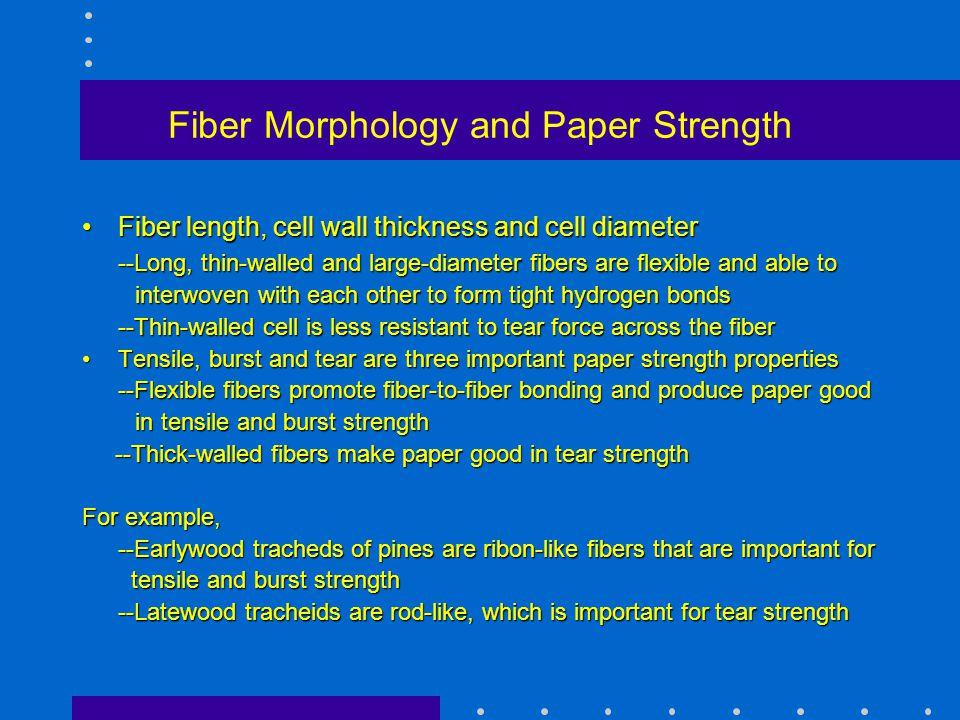 Fiber Morphology and Paper Strength