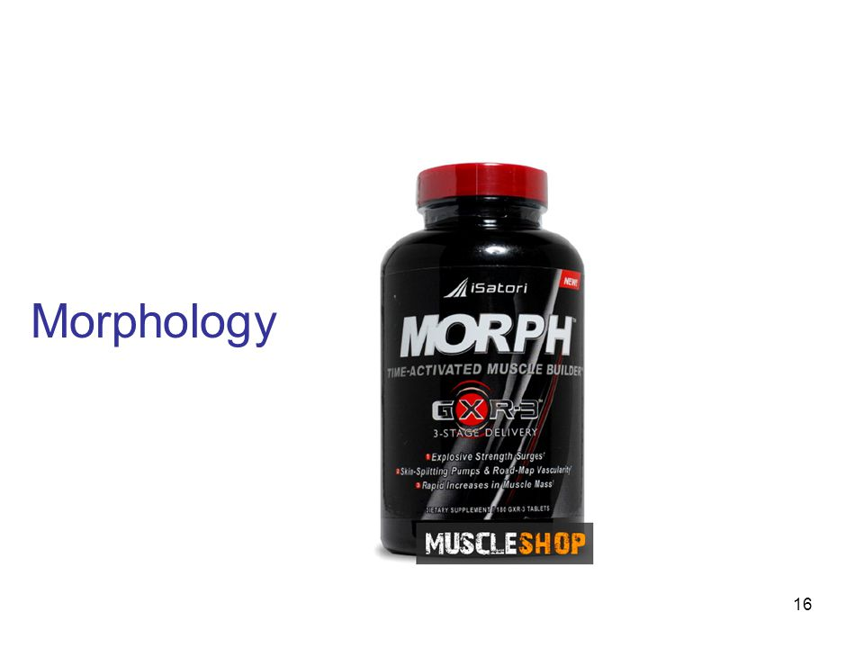 Morphology http://www.muscle-shop.co.uk/images/products/ms-600/isatori/morph-180-caps.jpg
